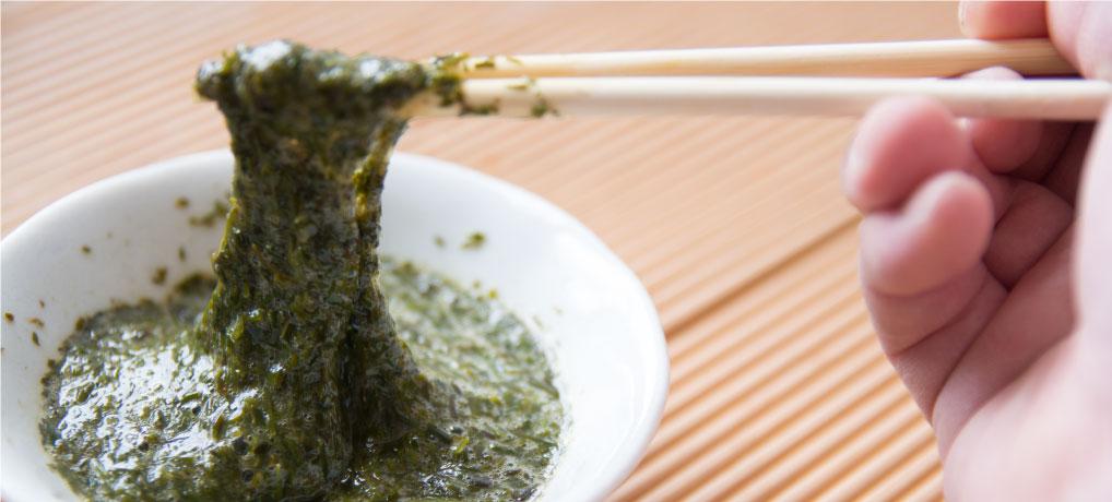 【話題の海藻】アカモク(ギバサ)とは?基本・食べ方を大公開
