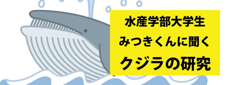 【後編】海なし県から水産学部へ!長崎でクジラの研究をする大学生の話